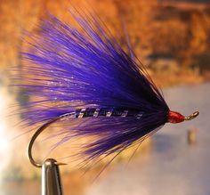 Winter Purple Steelie fly