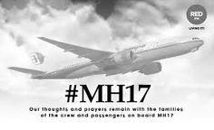 mh17 - Google zoeken