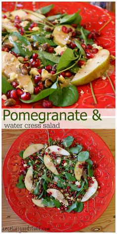 Watercress Salad with Pomegrante Dressing - RECIPE - http://ceceliasgoodstuff.com/water-cress-salad-with-pomegranate-vinaigrette