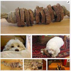 diy-dog-toy-kinda-indestructable.jpg (553×553)