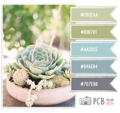 Color Crush Palette pastel greens and blues