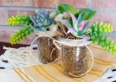 Faux Succulent Jar DIY | Hobnail House for Ellery Designs