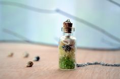 Terrarium necklace seashell necklace moss jewelry by VeinsOfNature