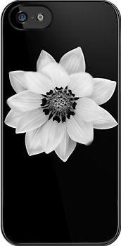 Black and White Gazania [Print and iPhone / iPad / iPod Case] by Damienne Bingham