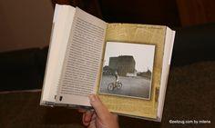 Das Buch ist eine Sammlung von Erzählungen und Essays, die direkt und indirekt mit Czernowitz verbunden sind. In lyrisch dichten Assoziationen wird das Leben eines Heranwachsenden in den 50er und 60er Jahren des letzten Jahrhunderts geschildert