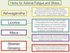 Herbs for Adrenal Fatigue and Stress