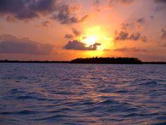 Reserva Seaflower- Esta reserva marinha é um dos ecossistemas mais isolados do Caribe