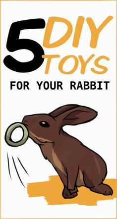 How to make some fun toys for your rabbit using cardboard and materials that you probably already have around your home. 5 DIY Toys for Your Rabbit Cony empresscony Häschen How to make some fun toys for your rabbit using cardboard and materials tha Rabbit Treats, Rabbit Toys, Pet Rabbit, Rabbit Binky, Pet Bunny Rabbits, Baby Bunnies, Cute Bunny, Diy Bunny Toys, Diy Toys For Rabbits
