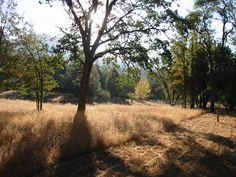 North Fork, California, USA