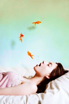 dreams, fred astaire, keep swimming, art photography, modern photography, audrey simper, fairy tales, sleep, goldfish