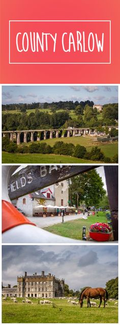 The Blackstairs Mountains and the River Barrow. The yew tree walk at Huntington Castle, and the fresh greenery of Altamont Gardens. The Éigse Carlow Arts Festival, historic towns, and history-filled mills. This is County Carlow.