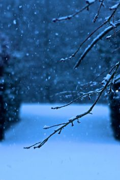 I stand outside and watch the falling snow...