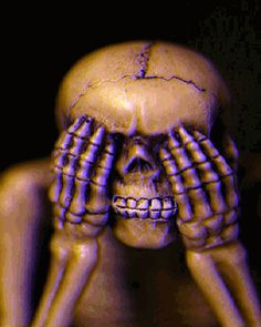 See No Evil Gif Pictures, Photos, and Images for Facebook, Tumblr, Pinterest, and Twitter
