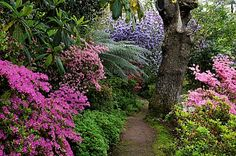 Path to tranquility