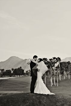 Desert Wedding Backdrop. Loved workign with this bride & groom. Check out our site to book your complementary consult: www.psplans.com