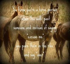 A horse quote