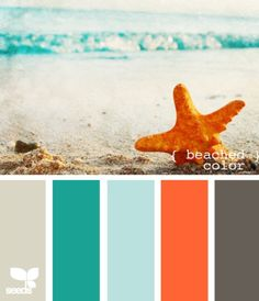 tourquoise and orange: beach Colors! Possible new wall color and orange for entry table.