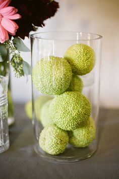 Hedge apples to repel bugs- ants, wasps, spiders, mosquitoes, and just about any bug!!