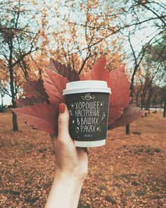 Trends Forecast for Fall/Winter 2018 Autumn Cozy, Fall Winter, Autumn Coffee, Autumn Aesthetic, Seasons Of The Year, Autumn Photography, Hello Autumn, Fall Photos, Happy Fall