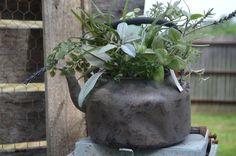 Teapot with Herbs-teapot, herbs, vintage style teapot