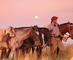 gaucho and horses, Argentina Visit Argentina, Argentina Travel, Rio Grande Do Sul, Argentina Culture, Horse Adventure, Riding Holiday, Go Ride, Romantic Escapes, East Africa