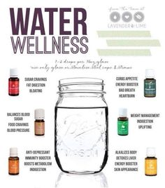 water wellness-ideas for using Young Living essential oils with your drinking water from Lavender Lime Doterra Essential Oils, Natural Essential Oils, Essential Oil Blends, Natural Oils, Yl Oils, Doterra Oils, Young Living Oils, Young Living Essential Oils, Living Essentials