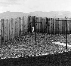 Robert Adams, A backyard, Colorado, 1968