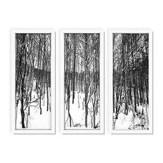Pascal Shirley Winter Forest I Triptych Photographs (715 CAD) ❤ liked on Polyvore featuring home, home decor, wall art, forest home decor, white wall art, triptych wall art, white home decor and photo wall art