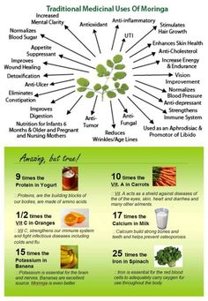 So many reasons everyone should have Moringa in their body! !  stefmiller.myzija.com
