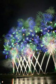 "The ""Phoenix"" fireworks display during the Nagaoka Fireworks Festival. Fireworks Pictures, Best Fireworks, Fireworks Festival, Fireworks Show, 4th Of July Fireworks, Sylvester Party, Cool Pictures, Beautiful Pictures, Beautiful Places"