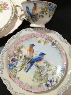 ABSOLUTELY GORGEOUS CHINA--BLUE BIRDS ARTFULLY DONE--CUP AND SAUCER SO DELICATE.