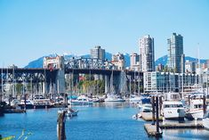 19 Free Things to Do in Vancouver, Canada (& Cheap Ideas Too! Canada Vancouver, Visit Vancouver, Vancouver Travel, Cheap Things To Do, Free Things To Do, Stuff To Do, Backpacking Canada, Canada Travel, Lynn Canyon