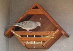 Dove nesting nook