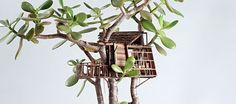 Elegant miniature treehouse sculptures wrapped around houseplants
