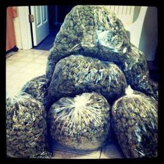 Order Cannabis oil,Weed/Marijuana online...Visit..https://www.legalcannabissupply.com..call/text:(720) 634-6937