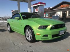 """""""Gotta Have It Green"""" 2013 Mustang GT 5.0"""