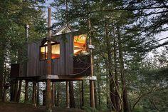 Big Sur Resorts   Post Ranch Inn - Tree House   Luxury Resorts in California