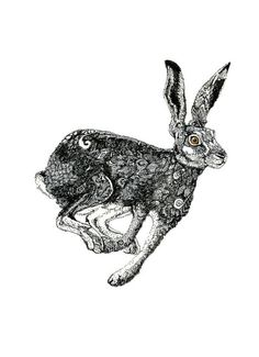 Items similar to Giclee Hare Print pen and ink Hare illustration on Etsy Hare Illustration, Illustrations, Hare Images, Les Fables, Jack Rabbit, Scratchboard, Textile Art, Giclee Print, Art Drawings