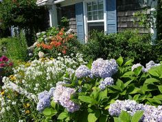Cape Cod Garden Ideas   ... Collection Galleries World Map App Garden Camera Finder Flickr Blog