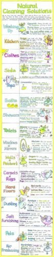 Natural Cleaning Solutions Chart - Liz Cook Charts