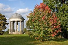 Petworth House and Park (West Sussex, England)
