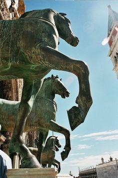 File:San Marco horses.jpg