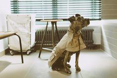 Nach Maß:Hunde Trenchmantel Regenjacke Wasserdicht von happystaffy.me auf DaWanda.com
