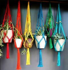 Macramé Plant Hangers in assorted bright colours – plant hanger Macrame Plant Holder, Macrame Plant Hangers, Plant Holders, Metal Plant Hangers, Free Macrame Patterns, Hanging Plants, Flower Pots, Flowers, Arts And Crafts