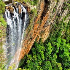 Springbrook National Park in the Gold Coast