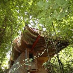 12 Fantastic Tree Houses From Across The World