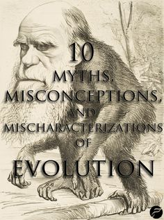 10 Myths, Misconceptions, and Mischaracterizations of Evolution How does evolution really work? Unfortunately, it doesn't work according to the ways in which some of our most prevalent evolutionary metaphors assert. High School Biology, Ap Biology, Secular Humanism, University College London, Religious People, Religion And Politics, Charles Darwin, Weird Science, Atheism