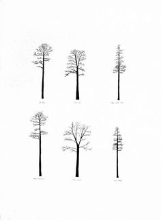 1000 ideas about tiny tree tattoo on pinterest tree for Minimal art family