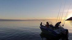 Midnight sun fishing in Senja waters! #dintur #senja #visitnorway #senjahavfiskesenter #seafishing #angling #halibut #troms  #visittroms #fishing #norway #norwaynaturetravel #sportfishing #instagramfishing #seaangler #fishingworld