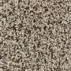 STAINMASTER Active Family Carefree Prospect Frieze Indoor Carpet